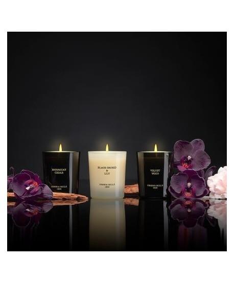 Bougie MM Cerreria Molla Black Lily & Orchid